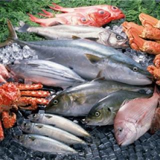Производство рыбы и морепродуктов